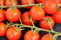 помидоры полезны для здоровья.