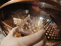 Лечение инфаркта стволовыми клетками