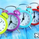 Как приучить себя вставать и ложиться вовремя